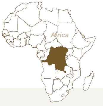 元アフリカ駐在員が語る海外進出のリスク管理